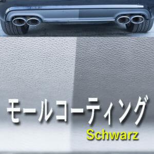 車の樹脂パーツコーティング